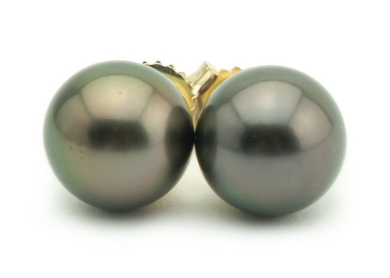 Peacock Plum Midnight 10.5mm Tahitian Pearl Stud Earrings