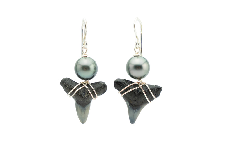 Tahitian pearl and fossil shark teeth earrings on silver
