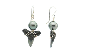 Tahitian pearl black fossil shark teeth earrings on silver
