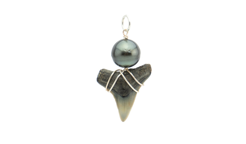 Tahitian pearl black fossil shark tooth pendant silver