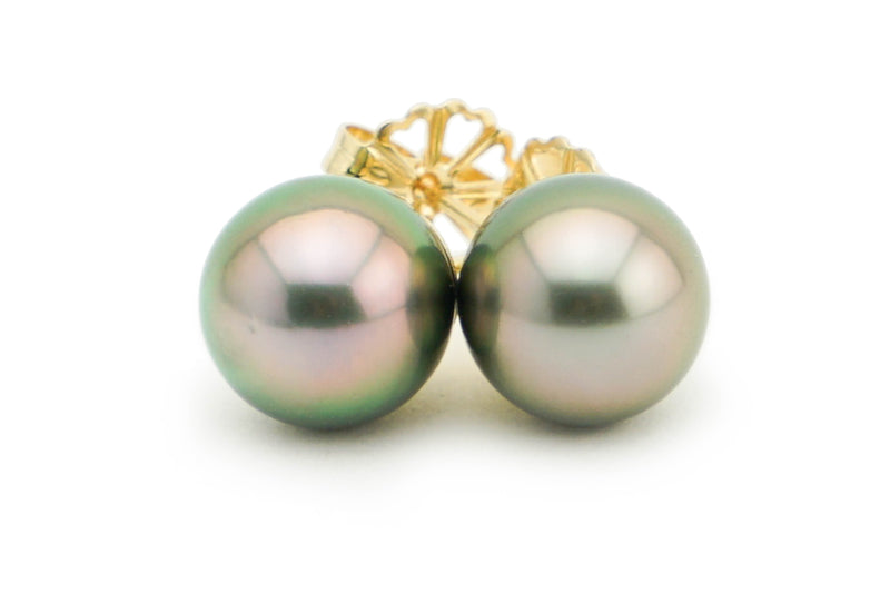 Statement Pink Peacock 10mm Tahitian Pearl Stud Earrings