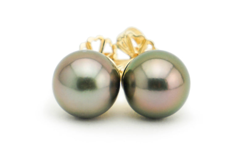 Dark pink peacock Tahitian pearl stud earrings