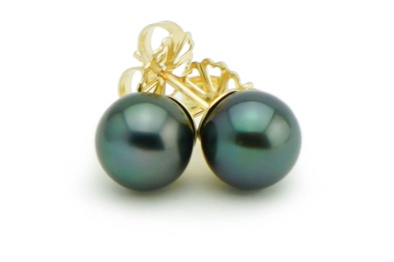 Black blue green Tahitian pearl stud earrings 8mm
