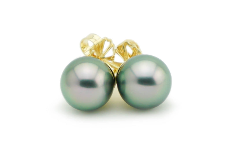 Pastel pink green peacock Tahitian pearl earrings 9.5mm