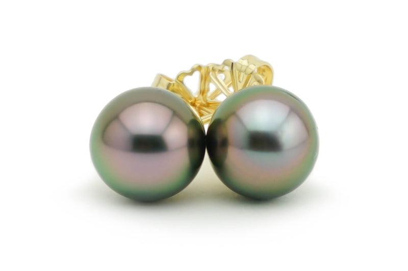 Pink aubergine peacock 10mm Tahitian pearl stud earrings