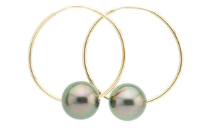 Peacock Tahitian Pearl Hoop Earrings