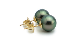 Midnight Peacock Tahitian Pearl Stud Earrings