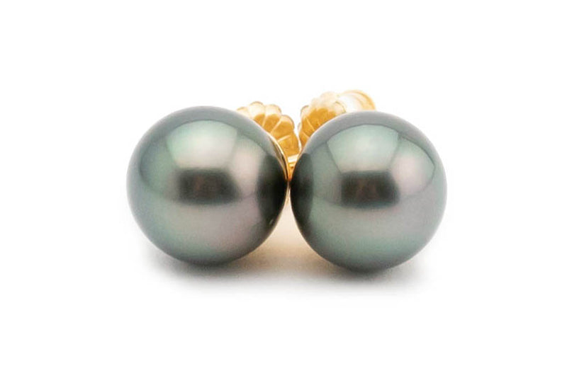 Silvery green peacock Tahitian pearl stud earrings