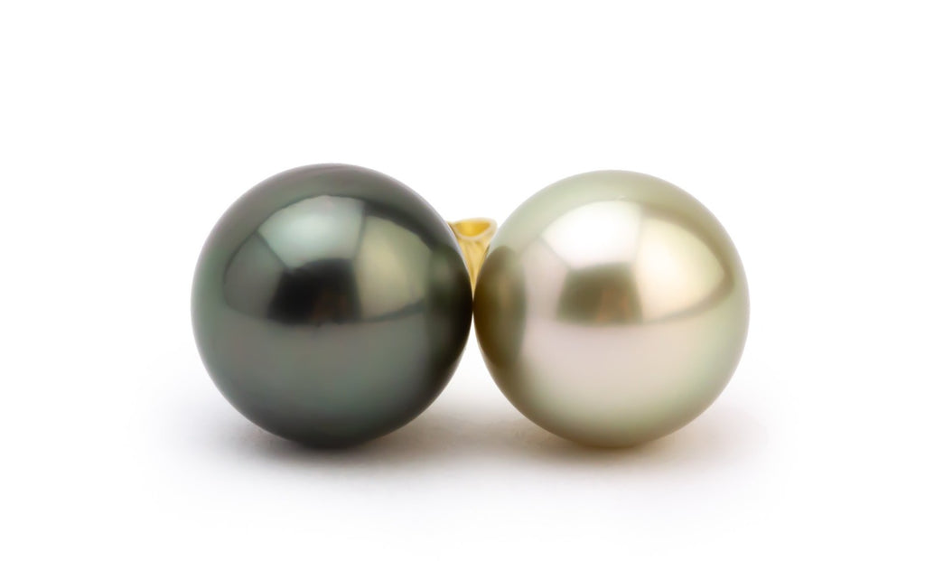 Black & White Tahitian Pearl 10.5mm Stud Earrings