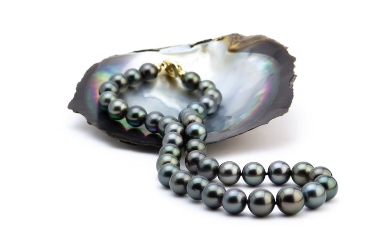 Black Tahitian Pearl 11-13mm necklace Kamala Harris