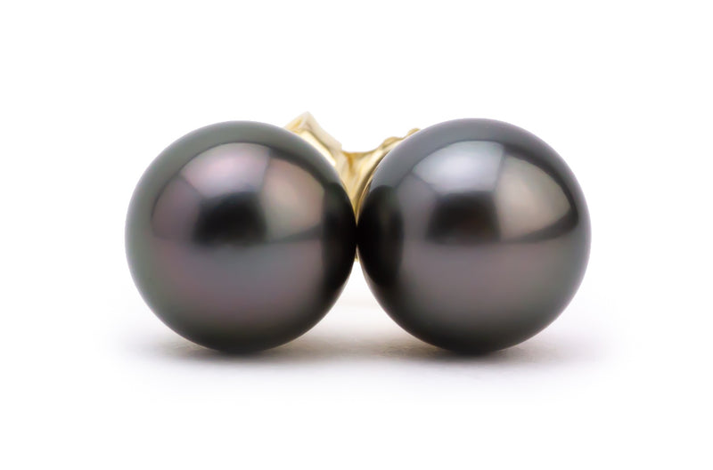 Dark purple 8mm Tahitian pearl stud earrings