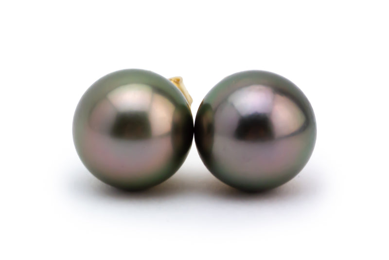 Aubergine Tahitian Pearl 10.5mm Stud Earrings
