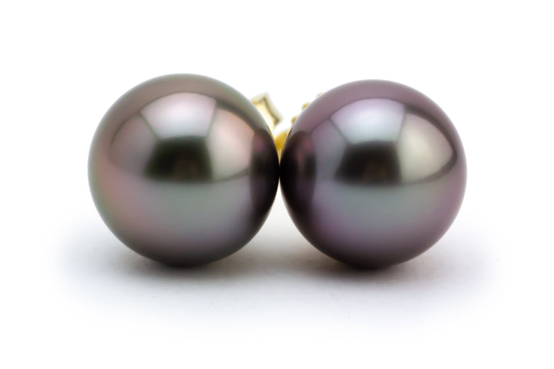 Aubergine Tahitian Pearl Stud Earrings