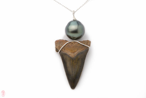 Fossil Great White Shark tooth and Tahitian pearl pendant