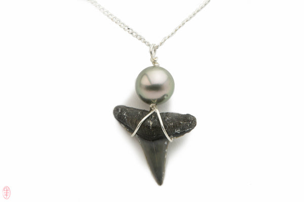 Tahitian pearl and fossil sharks tooth pendant on silver