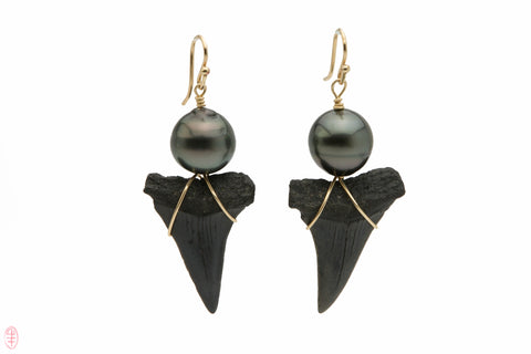 Fossil Great White Shark tooth and Tahitian pearl earrings