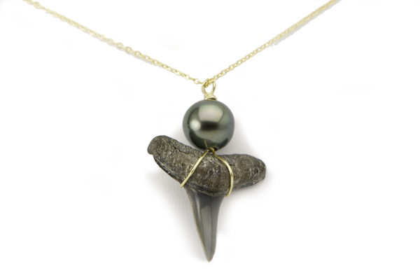 Tahitian pearl and fossil shark tooth pendant, ecological, sustainable, natural