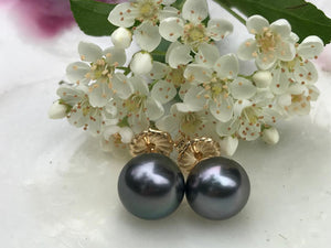 Dark blue purple silver pewter Tahitian pearl stud earrings