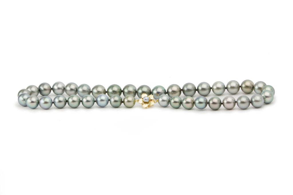 Blue green Tahitian pearl strand, 10mm to 12.5mm