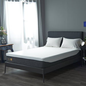 MattX™ Latex Memory Foam Mattress