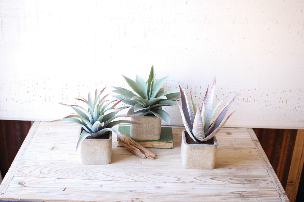 Urban Farmhouse Designs Set of Three | Large Artificial Succulents in Square Pots