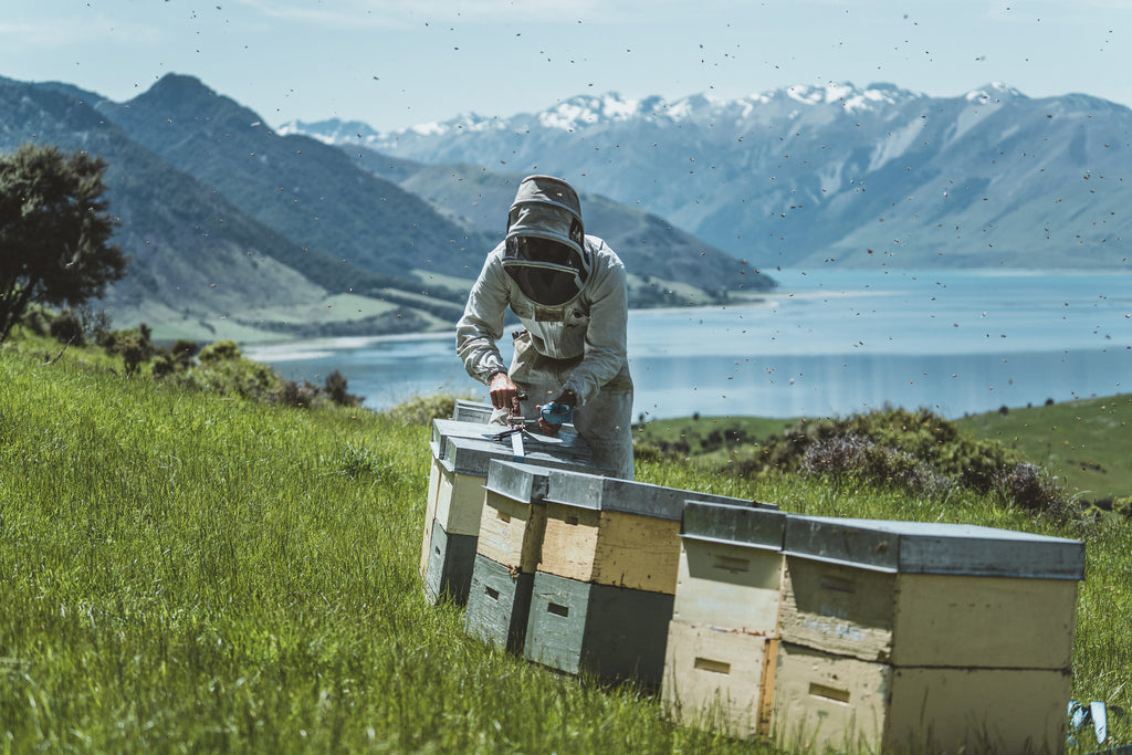 About New Zealand Honey Co