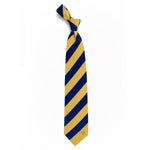 EAGLE WINGS REGIMENT TIE