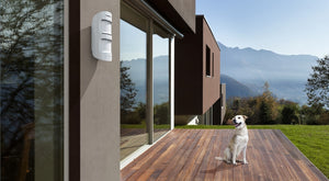 Meet MotionProtect Outdoor — an outdoor motion detector that reacts only to real threats