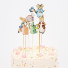 Load image into Gallery viewer, Meri Meri Peter Rabbit and Friends Cake Toppers