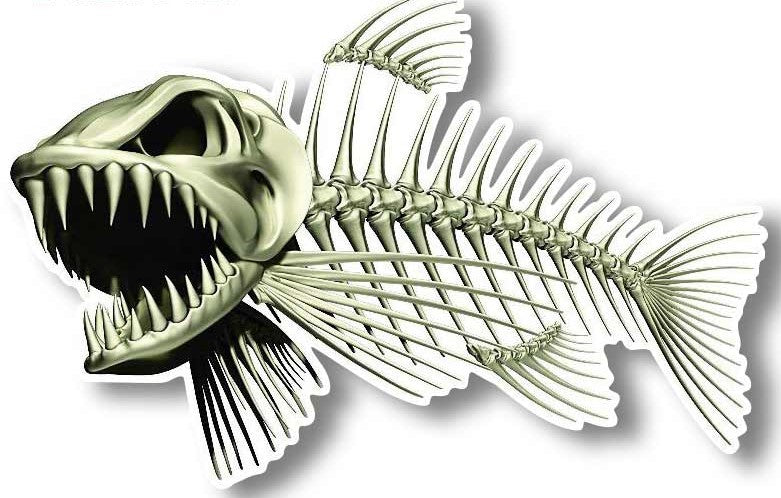 Bone Fish ~ Decal