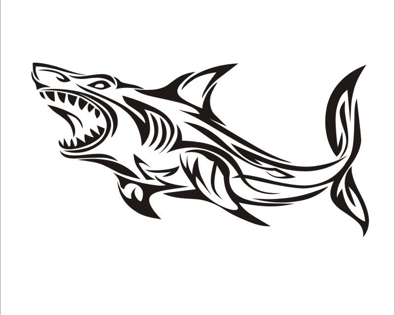 Shark ~ Bumper Sticker