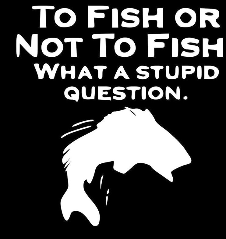 To Fish Or Not To Fish? What A Stupid Question.