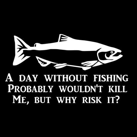 A Day Without Fishing ~ Bumper Sticker (Black or Reflective Silver)