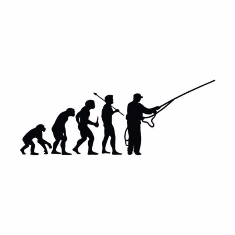 Fishing Evolution ~ Bumper Sticker (Black Or Reflective Silver)