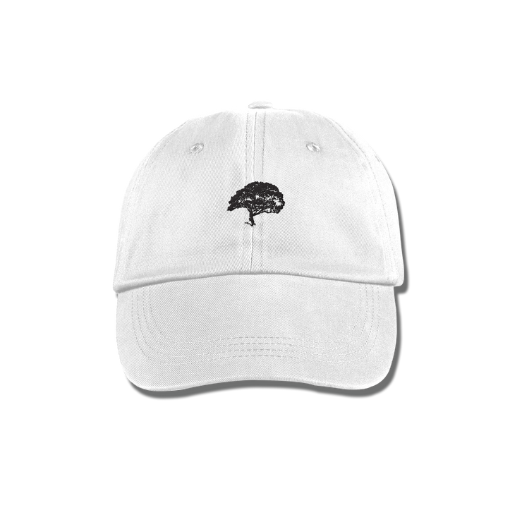 WLNR Tour Dad Hat