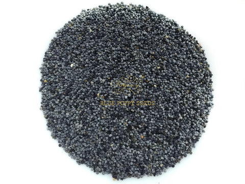 Poppy Seeds (Blue)