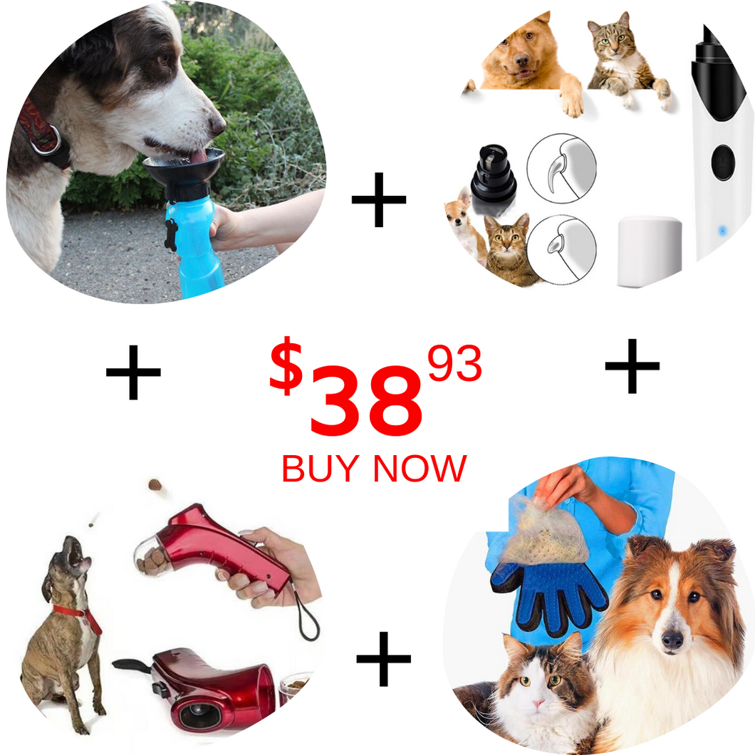 Dog's Needs Limited Offer!