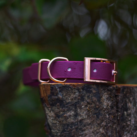The Merlot Rose Premium Waterproof Biothane Collar