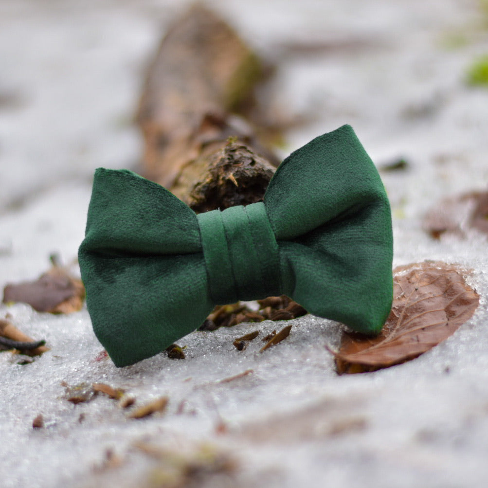 Into The Woods - Forest Green Velvet Bow Tie