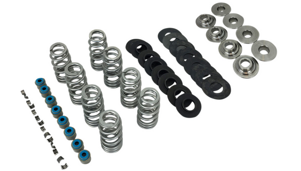 Fueling Beehive Valve Spring Kit For M8