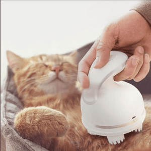 Pamper Cat Massager ( Buy 2 Get Extra 10% Off ) TopViralPick