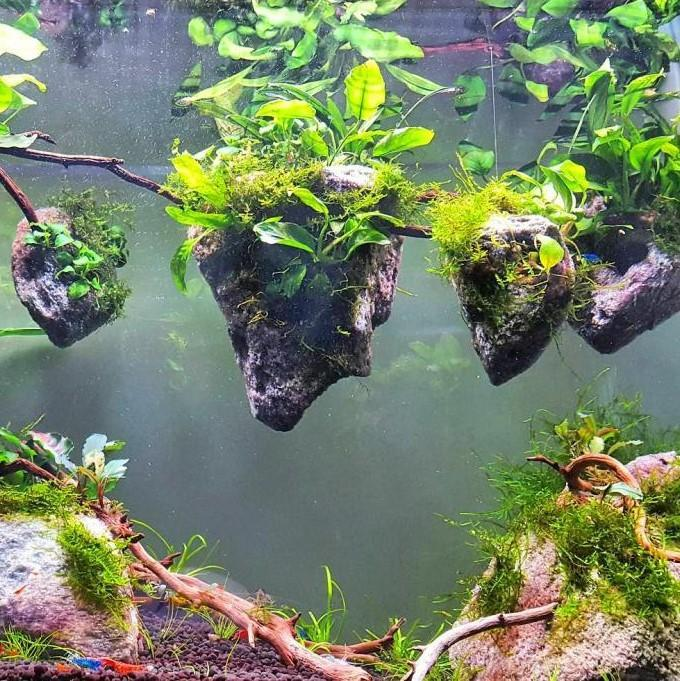 Floating Avatar Islands For The Aquarium ( Buy 2 Get Extra 10% Off ) TopViralPick