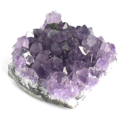 Amethyst Clusters - Crystalline Creatures
