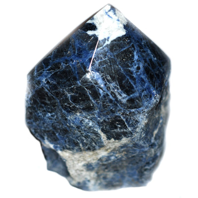 Sodalite Half Polished Point - Crystalline Creatures