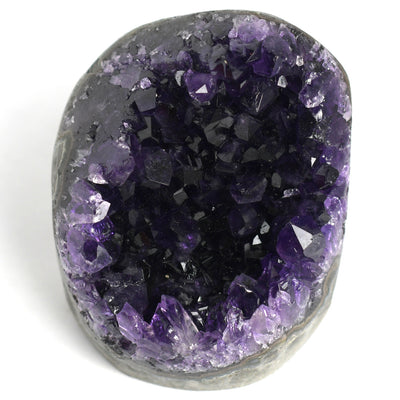Buy Amethyst Standing Clusters from Crystalline Creatures