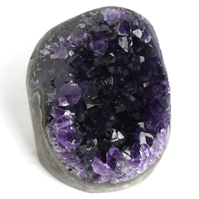 Amethyst Standing Clusters - Crystalline Creatures