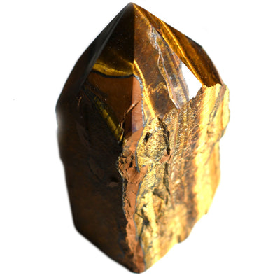 Buy Tiger's Eye Half Polished Point from Crystalline Creatures