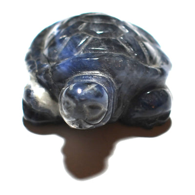Buy Crystalline Sodalite Turtle from Crystalline Creatures