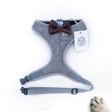 Debonair Danny - Hand-made, suiting harness with luxury silk bow-tie, pocket and bone button – XS, S, M, L & Custom