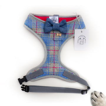 Sir Christian - Hand-made, Scottish tweed harness with denim bow-tie, pocket and bone button – XS, S, M, L & Custom